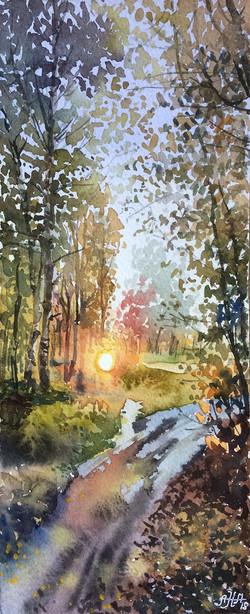 Осенняя дорога. Закат