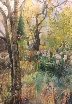 Сад в октябре