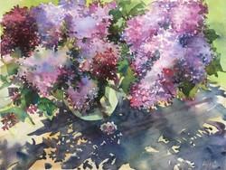 Lilac lace
