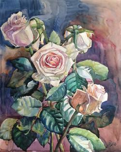 Катюшины розы
