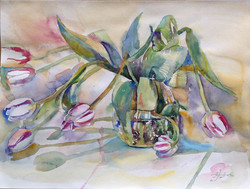 Белые тюльпаны - 3