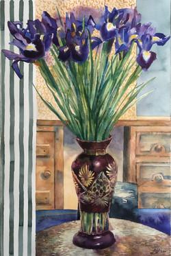Irises and stripes