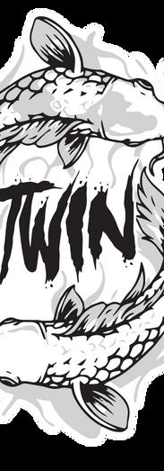 S TWIN