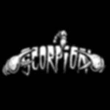 Scorpion model logo by T.Patterson Surfboards