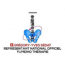 representant national.jpg