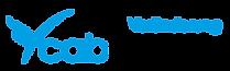 Cabcoach_logo_neu.png