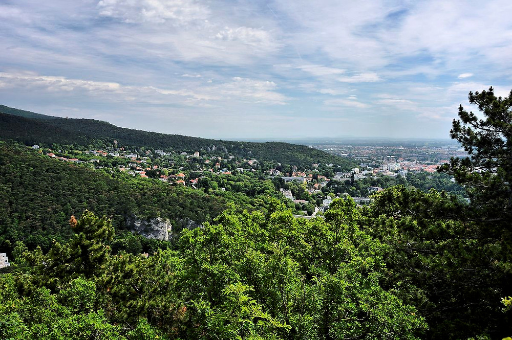 Ausblick Rauheneck