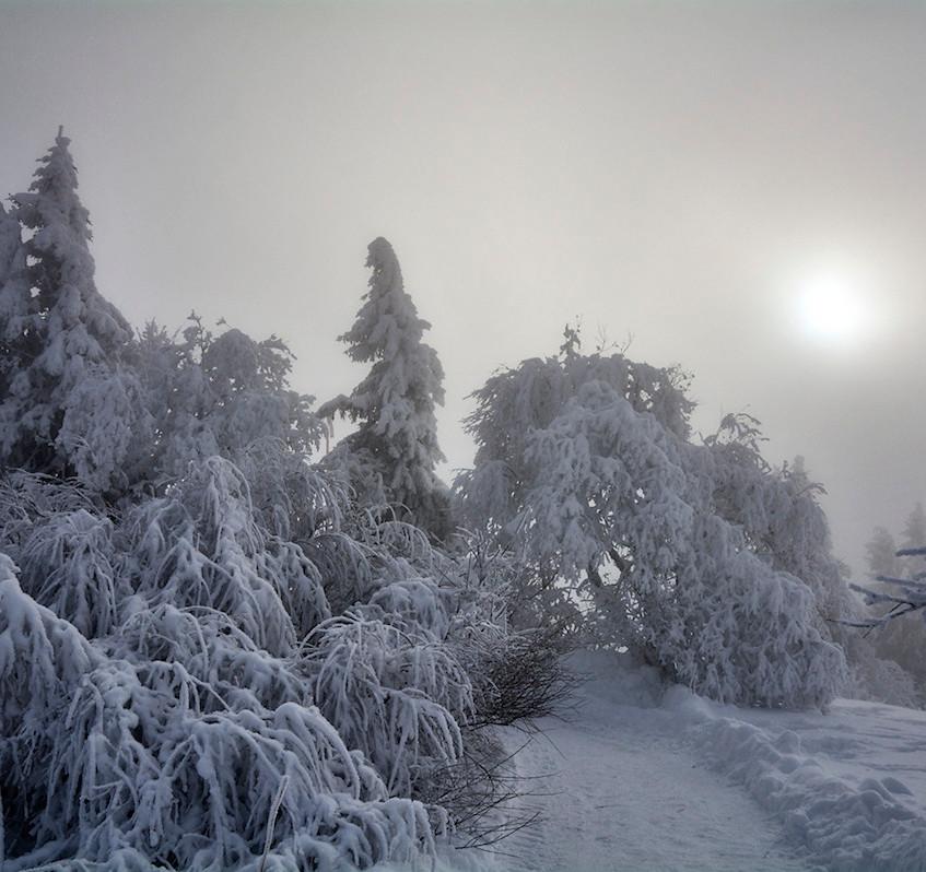schwere Schneelast
