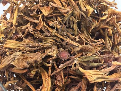 Dried Golden Enoki Mushrooms