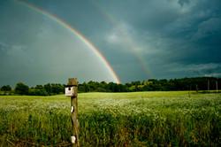 Rainbow over the field