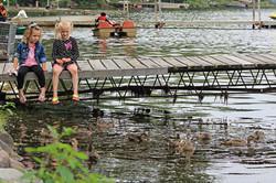 Kids watching ducks