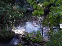 Wonderfull cooling brook.jpg