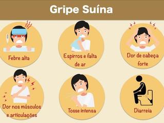 GRIPE SUÍNA – H1N1