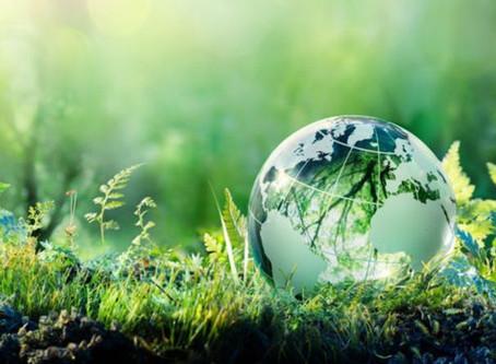 Países procuram ações sustentáveis que ajudem o meio-ambiente e economia