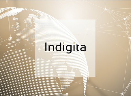 Indigita's new visual identity underscores the company's focus on simplicity