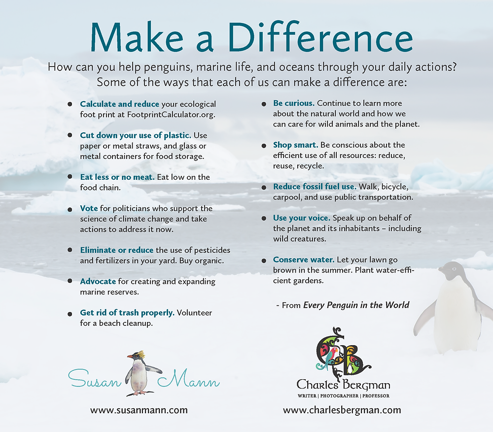 How to make a difference for penguins