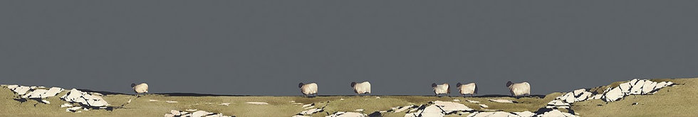 Wandering Sheep