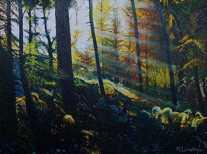 Mick Livingstone - 'sunbeams'.jpg