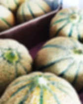 Meloni - La Fattoria - Italian Moods.png