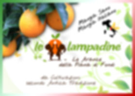 Le_Lampadine™_-_Le_Arance_della_Piana_di