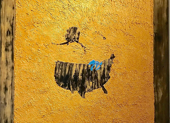 Echoes of Gold Rush in America