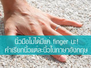 นิ้วมือไม่ได้มีแค่ finger นะ! คำเรียกนิ้วแต่ละนิ้วในภาษาอังกฤษ