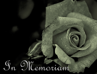mourning-108781_1920-2.png