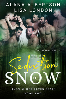 THE SEDUCTION OF SNOW