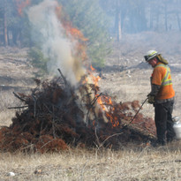 CV JOP Burning Hand Slash Piles 003.JPG