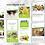 Thumbnail: Social Media Management - Basic Package