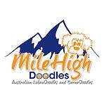 MileHigh Doodles