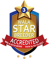 MileHigh Doodles 03-21 WALA Accredited L