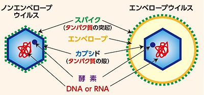 ginsetsu effect virus 01.jpg