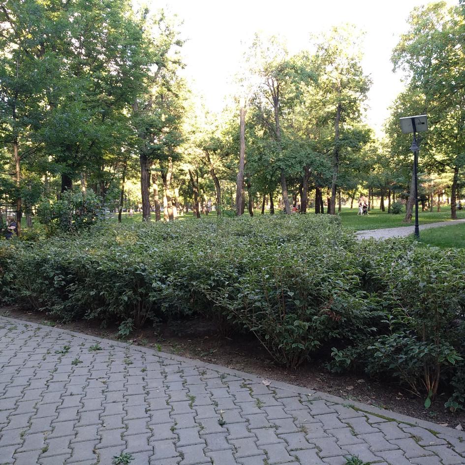0. parcul cu gradini (1).jpg