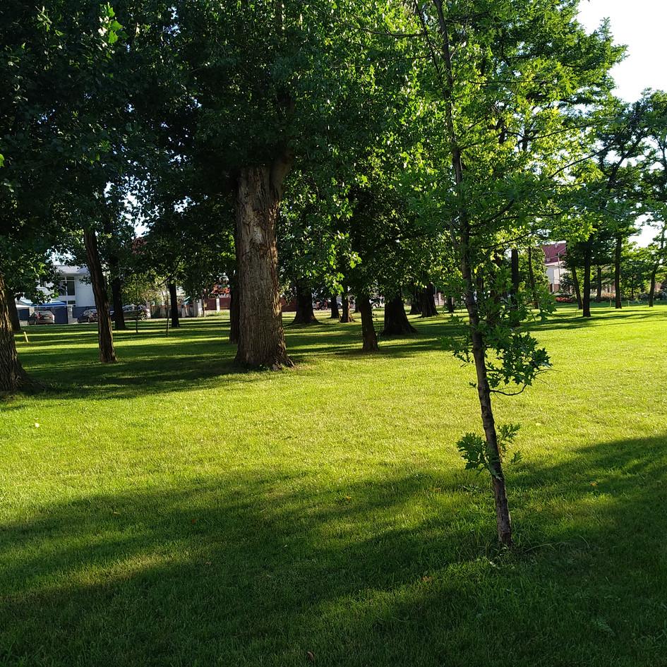 0.parcul cu gradini(19).jpg