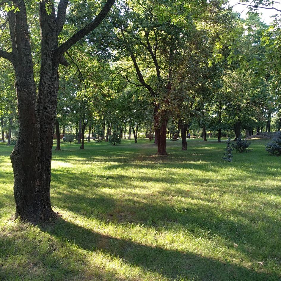 0. parcul cu gradini (10).jpg