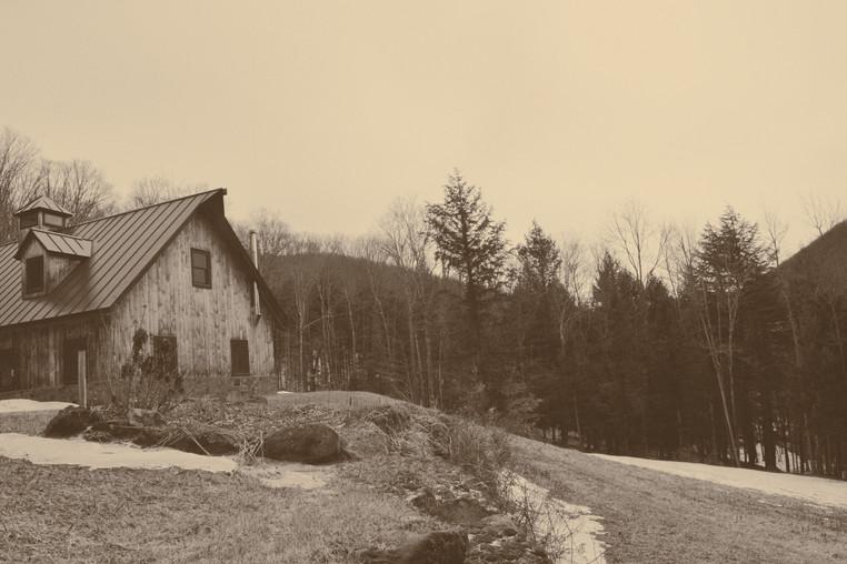 Woods meets Barn