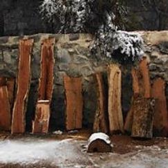 Mesquite Wood Logs