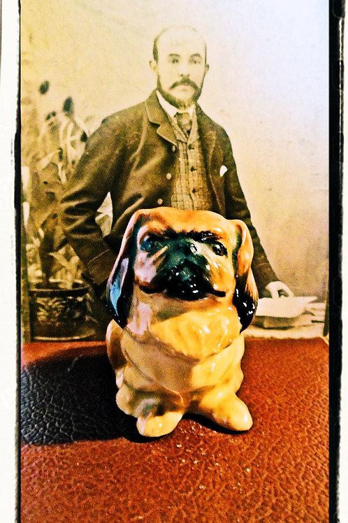 Vintage Miniature Pekingese Dog.