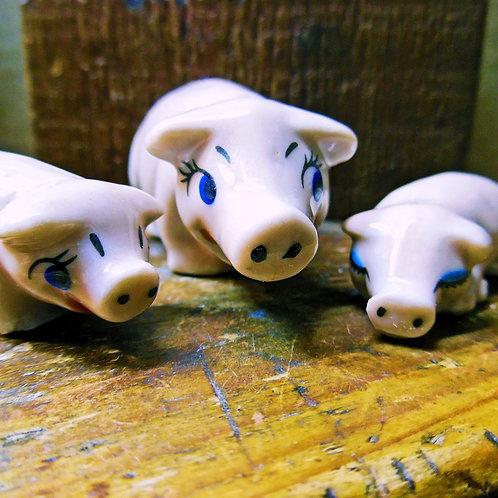 Wade Pig Family