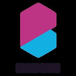 BlindSave_logo_black.png