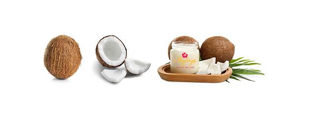 www.tumltd-organic-coconut-beauty-laylas