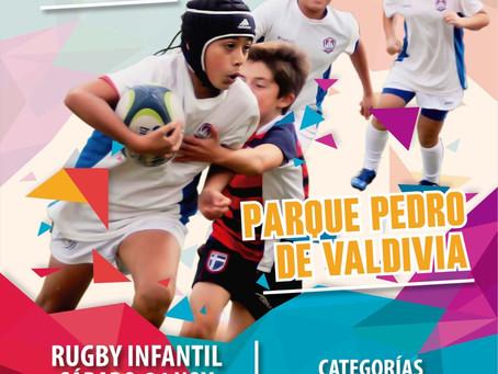 Festival de Rugby infantil 2018 (24/11)