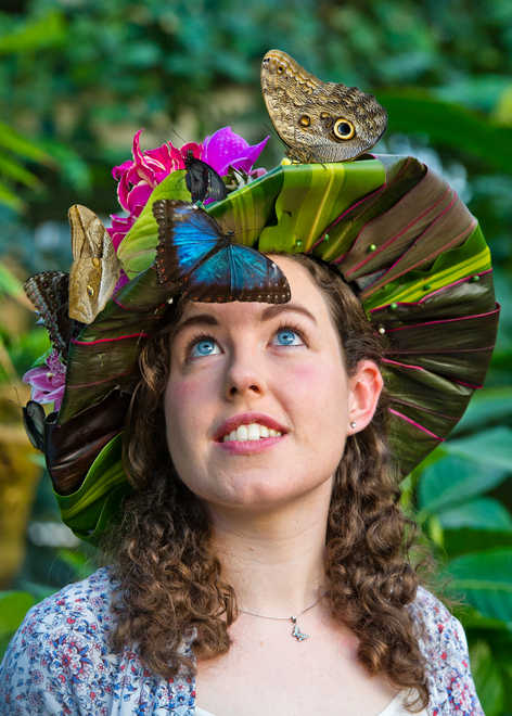 Don't blink or you might miss it!   Entomologist Anna Platoni wears a beautiful hat made of fresh tropical flowers designed by florist Emma Reynolds to celebrate the opening of Butterflies in the Glasshouse at RHS Garden Wisley.