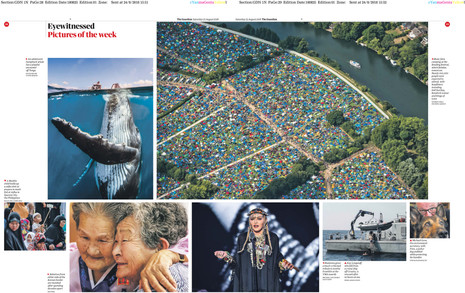 Guardian Pictures of the week.jpg