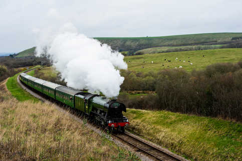 Something to get steamed-up about: The Flying Scotsman, the world most famous steam locomotive arrived at the Swanage Railway today (Fri) to be reunited with a rare Devon Belle Pullman observation carriage for the first time in almost 50 years. There to greet and wave it off it was Penny Vaudoyer, the daughter of the man who saved the iconic steam locomotive from the scrapyard to see it at Swanage station as it hauled its first train at the start of a three-week visit to the Isle of Purbeck . Penny flew in from her home in Portugal to perform the honour with the train guard's green flag at the station this morning (Fri). It was Penny's enterprising and charismatic father, the late Alan Pegler, who purchased the Flying Scotsman' from British Railways for the scrap value of £3,000 in 1963. Picture shows the Flying Scotsman returning to Swanage Train station after its first official journey.