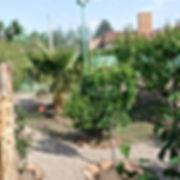Jardín con árboles, plantas y cerco perimetral.