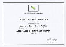 Terapia_de_Aceptaciòn_y_Compromiso.jpg