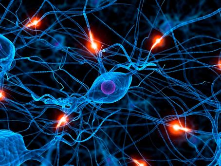 Hipnose e dopamina: a parceria da motivação, foco e felicidade