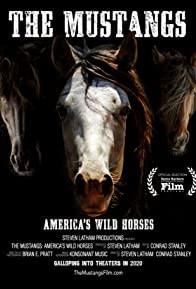 The Mustangs: America's Wild Horses